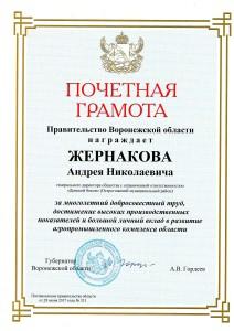 грамота от губернатора Воронежской области