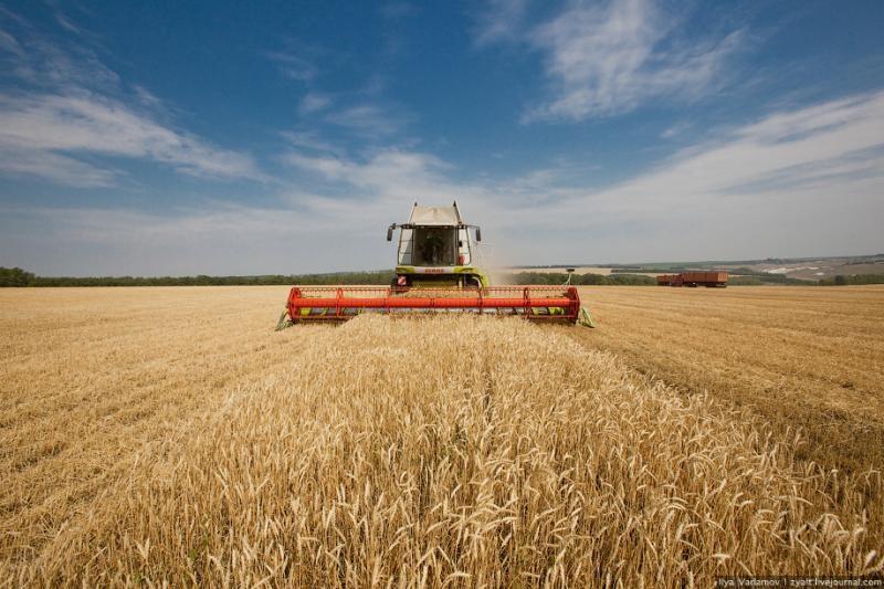 Башкирия планирует войти в пятерку ведущих аграрных регионов к 2020 году